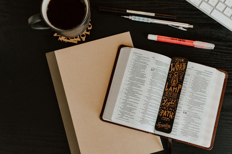 Sermon Study Questions 25 April 2021